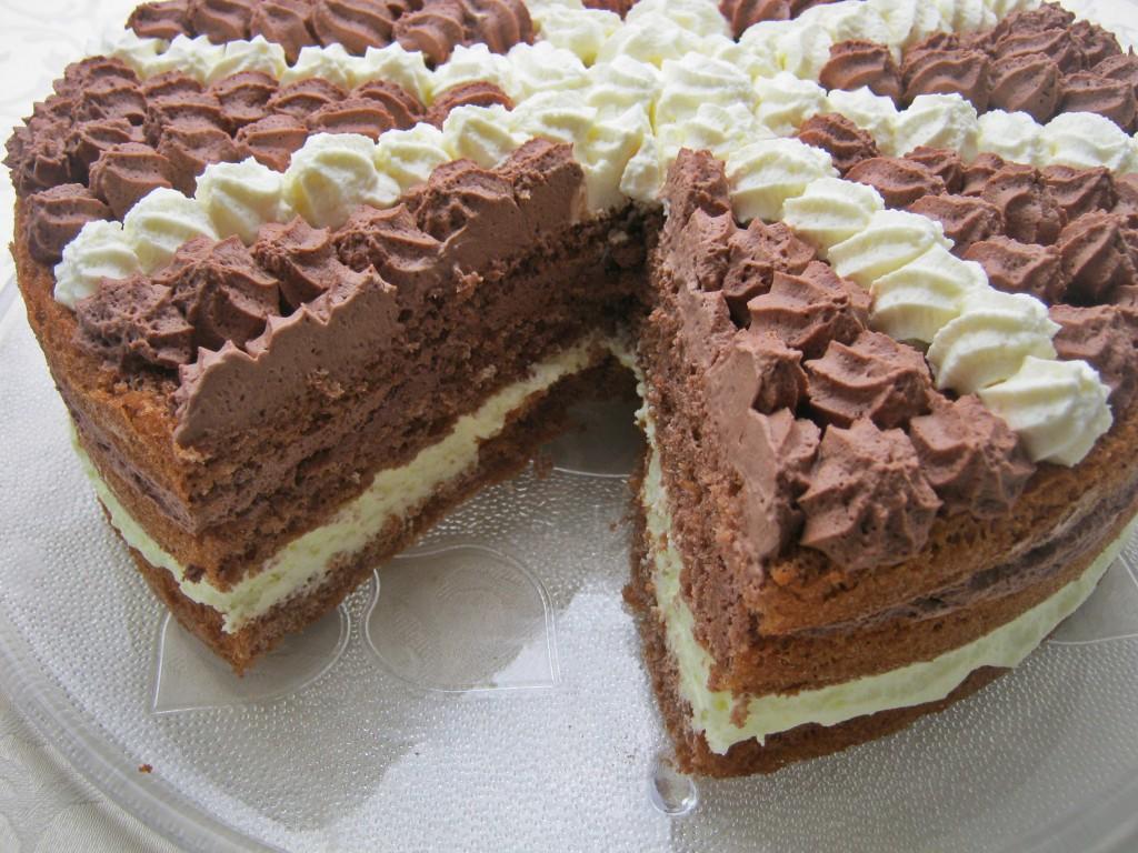 Tort Opawian5